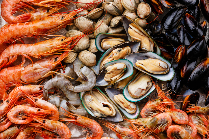 Name to rewild a third of UK waters items opportunities for shellfish sector