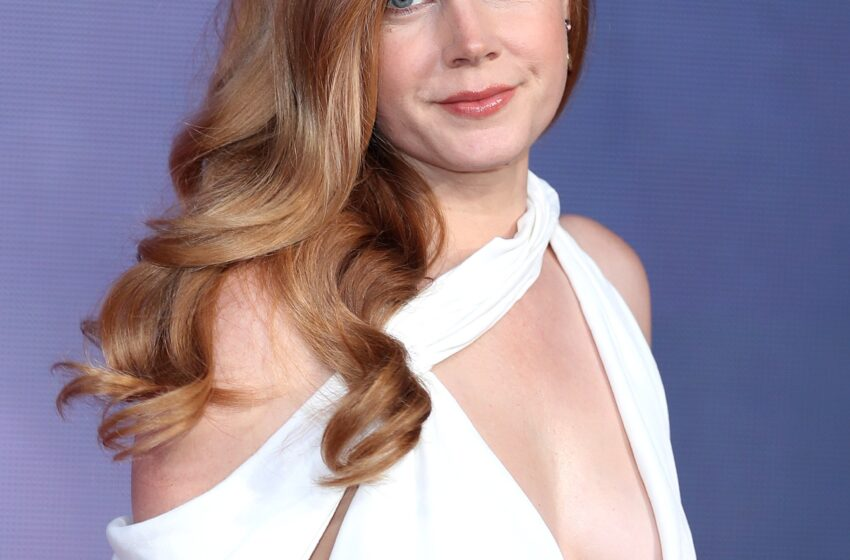 Amy Adams' Daughter Looks to be Correct Fancy Her In Rare Birthday Tribute Picture