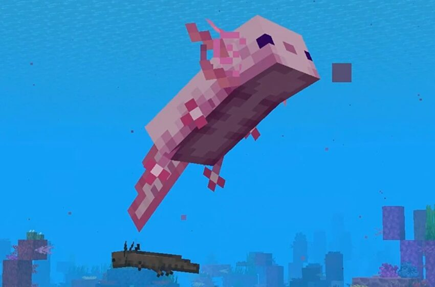 Minecraft change 1.17 launches axolotls and goats and more subsequent week