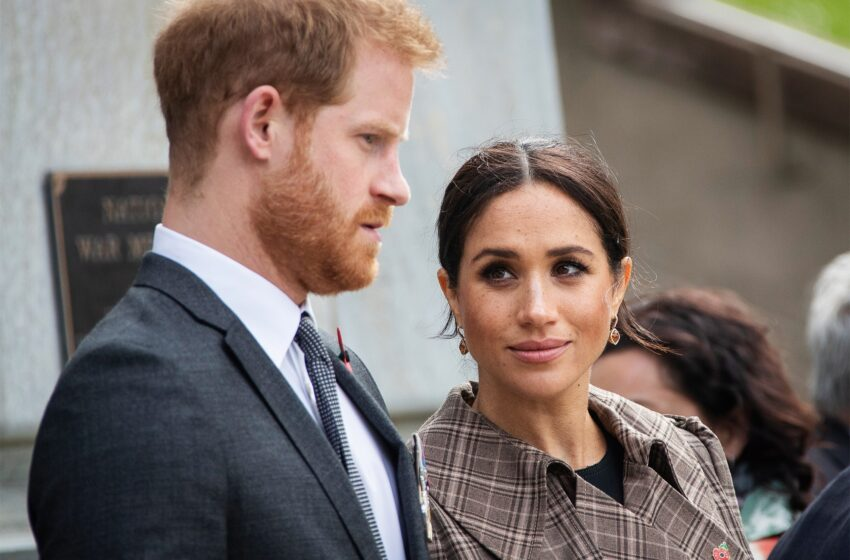Shopping for Prince Harry and Meghan Markle on Royal Net spot? Maintain Scrolling.