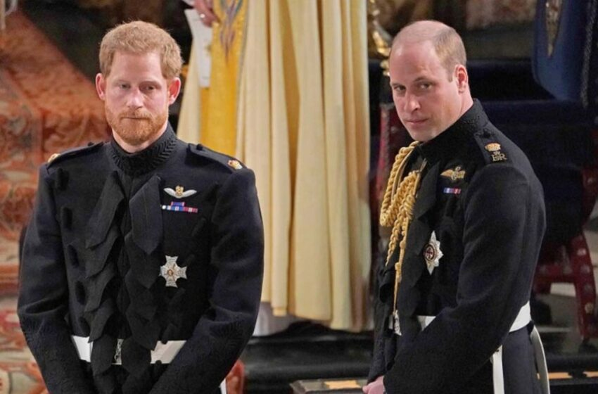 Prince William 'Threw Harry Out' After Meghan Bullying Claims: Narrative