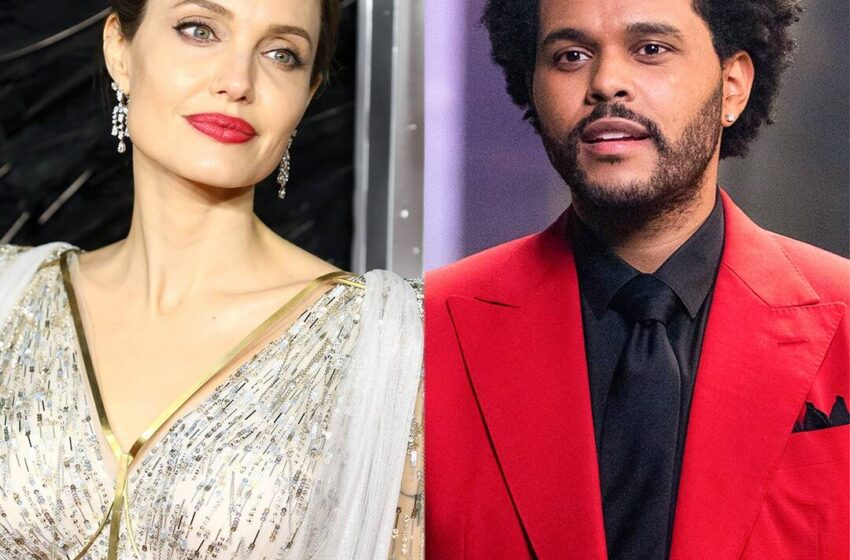 The Weeknd and Angelina Jolie Flip Heads With Rumored Date