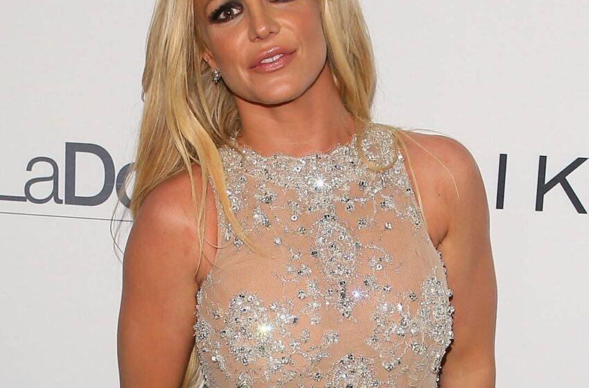 """Britney Spears Says Father Jamie Is """"Ruining"""" Her Lifestyles and Desires Him Charged With """"Conservatorship Abuse"""""""
