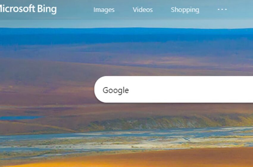 This Is Awkward, But The Most Searched Notice On Bing Is 'Google'